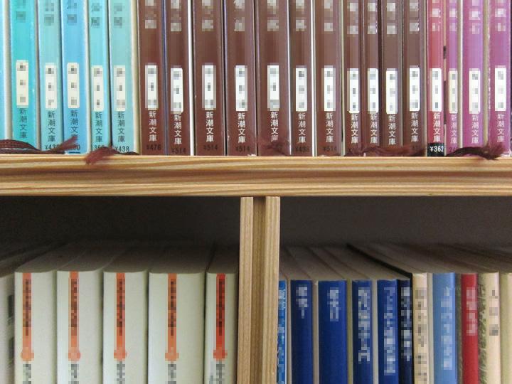 1Fbookcase3.jpg