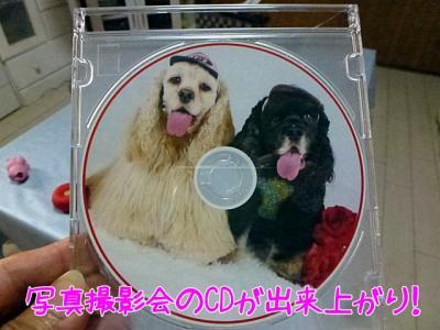 CDが出来上がり
