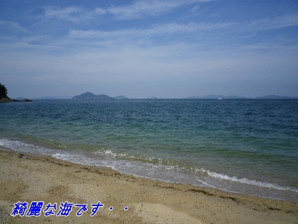 綺麗な海です!