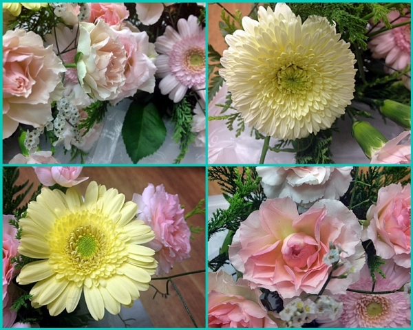 頂いたお花たち