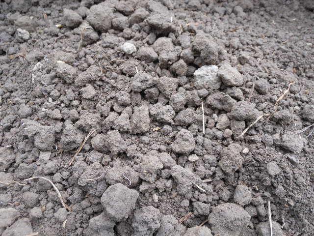 自然栽培用土。