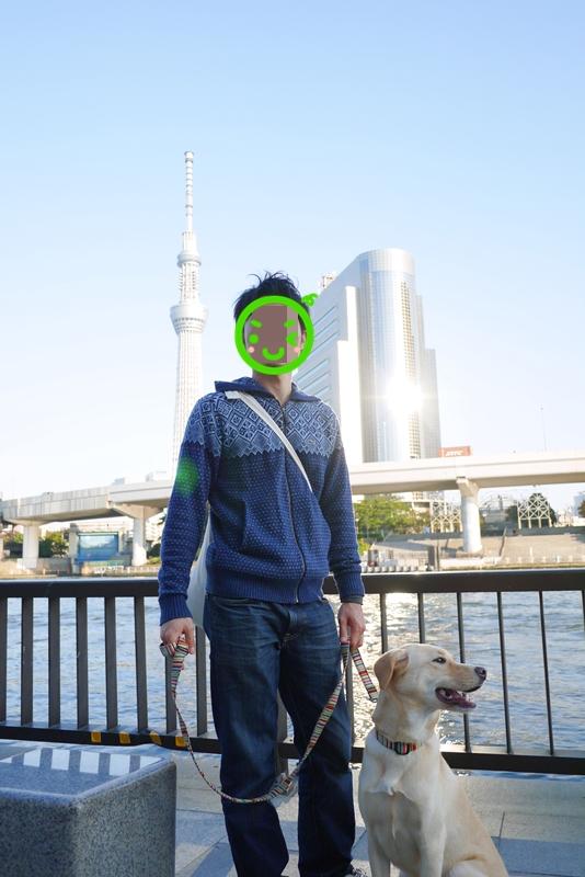 20131106sukai2.jpg