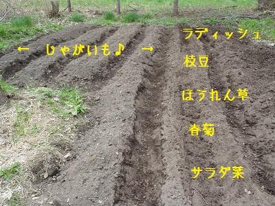 b20130525-P5250207.jpg