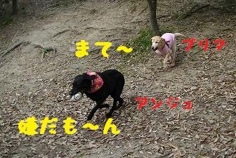 20130414_6.jpg