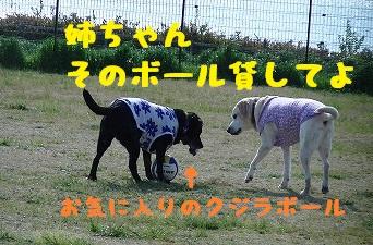 20130427angekotarou1.jpg