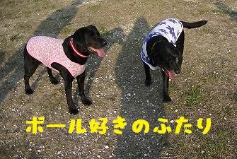 20130427angekoyuki1.jpg