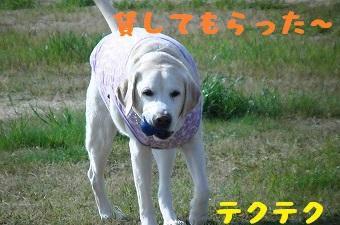 20130427kotarou2.jpg