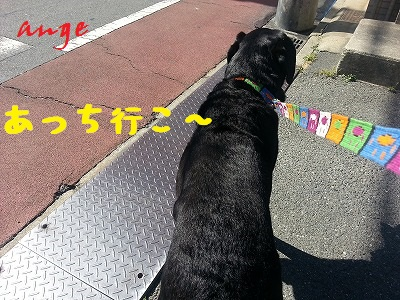 20130613ange2.jpg