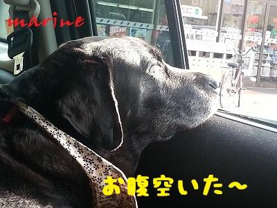 20130719marine1.jpg