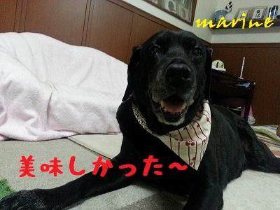 20130719marine5.jpg