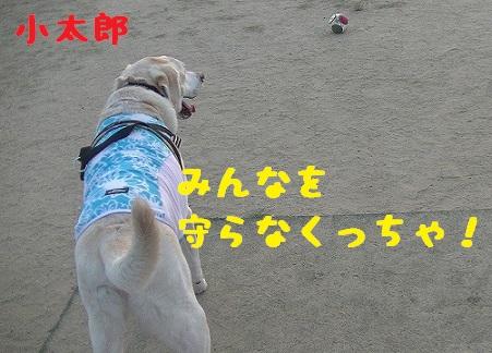 20130817kotarou2.jpg