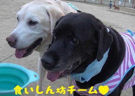 20130817marinekotarou1.jpg