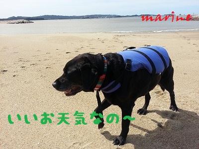 20130916marine1.jpg