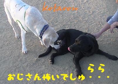 20130928_4.jpg