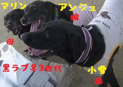 20130928_5.jpg