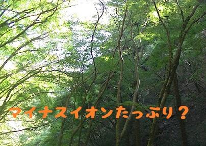 20131012_6.jpg