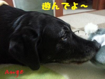 20131101_235403.jpg
