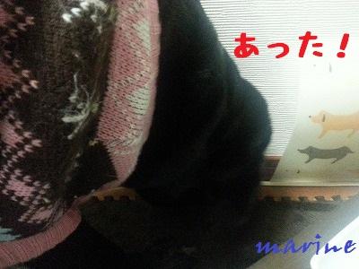 20131122marine2.jpg