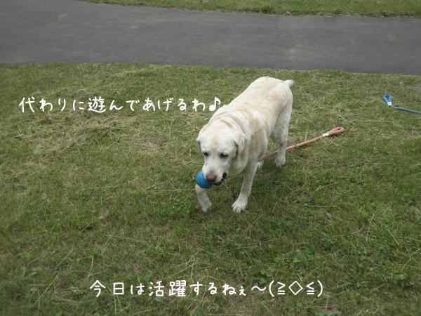 ball3_20130706210819.jpg