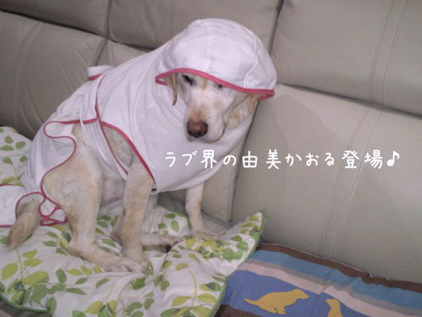 basu_20130410210526.jpg
