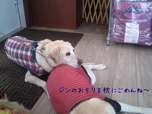cafe_20130406213823.jpg