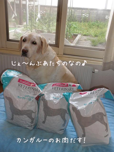 food_20130626203217.jpg