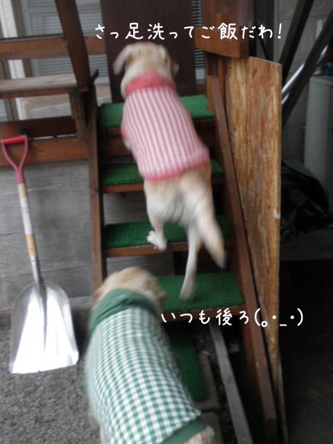 kaidan_20130418212312.jpg