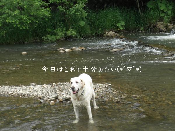 kawa2_20130618213053.jpg