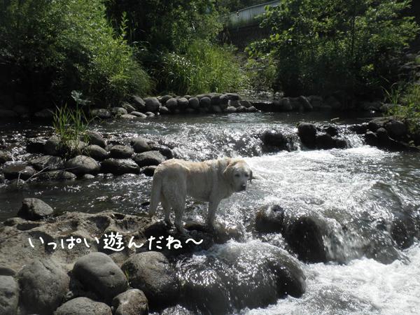 kawa3_20130701212302.jpg