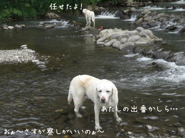 kawa4_20130706210833.jpg