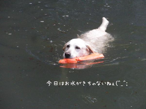 maru_20130623201243.jpg