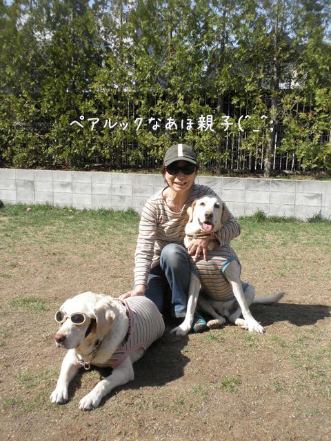 oyako_20130517205634.jpg