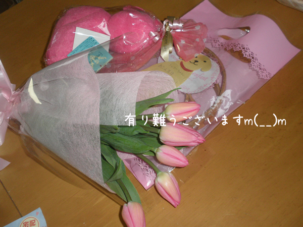 pure1_20130402223100.jpg