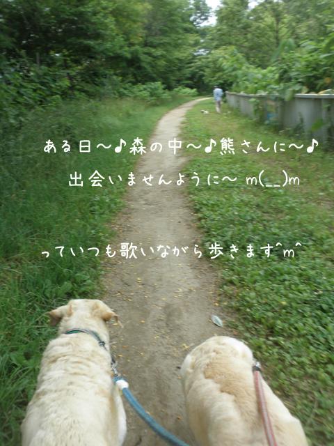 s3_20130706210720.jpg