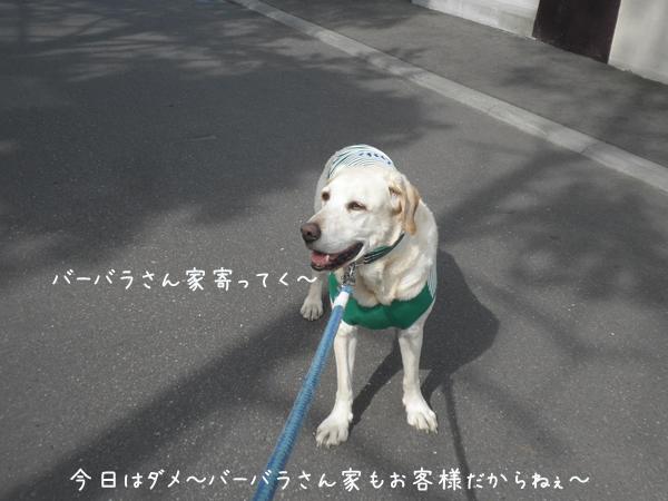 sanpo2_20130602213350.jpg