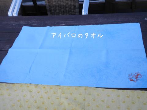 taoru2_20130623202159.jpg