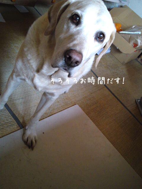 wasitu_20130425211650.jpg