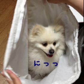 fc2blog_201305122144249ca.jpg
