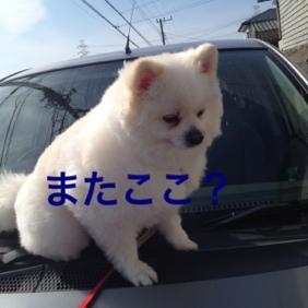 fc2blog_2013052022520868c.jpg