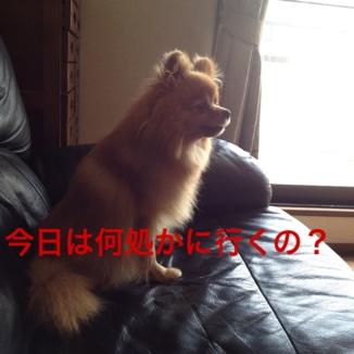 fc2blog_201305251629541ca.jpg