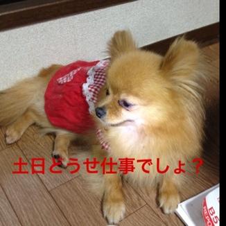 fc2blog_20130531204519699.jpg