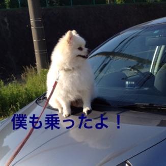 fc2blog_20130604184615869.jpg