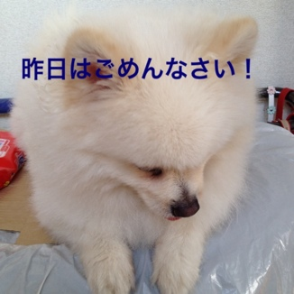 fc2blog_201306062059421e2.jpg