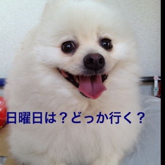 fc2blog_2013060621023198d.jpg