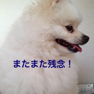 fc2blog_20130606210437512.jpg