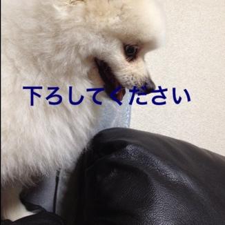 fc2blog_2013061017023835e.jpg