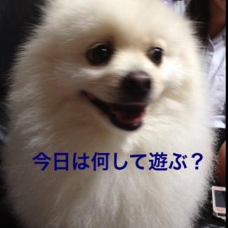 fc2blog_20130629212001f3a.jpg