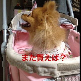fc2blog_2013071022151063b.jpg