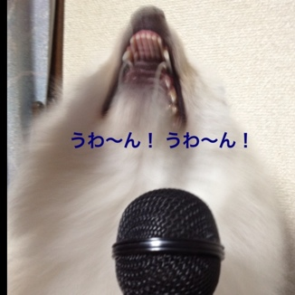 fc2blog_20130718093639a04.jpg