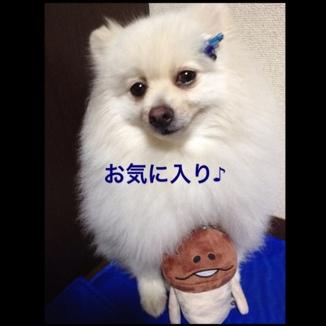 fc2blog_2013071921500727c.jpg